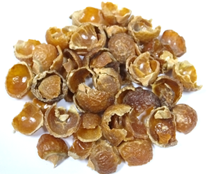 Organic Sustainable Laundry Soapnuts